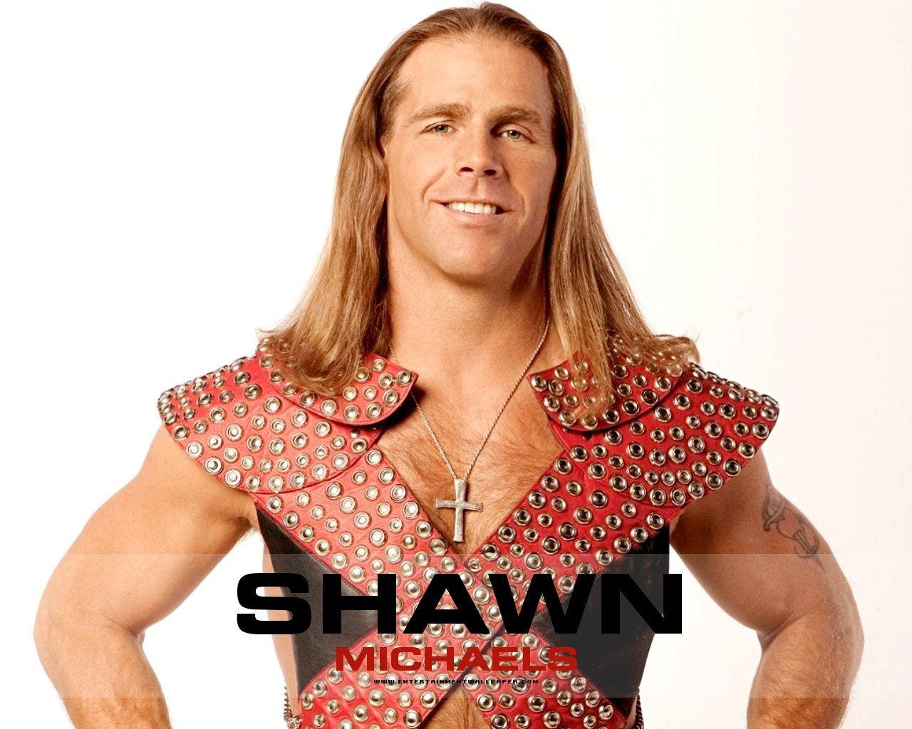 Television presenter Shawn Michaels - age: 55